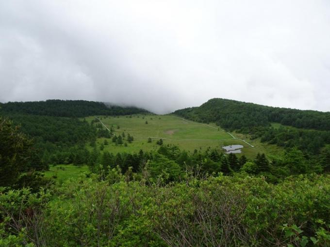 雲上の丘から池の平湿原