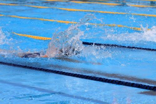 [韓国の反応]韓国で開催中の世界水泳で盗撮 30代の日本人が容疑認める