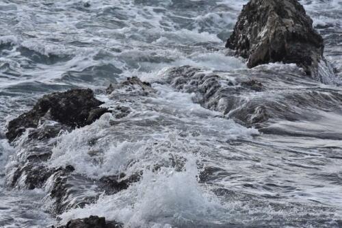 [韓国の反応]20世紀初頭までの日本官報に「朝鮮海」表記 韓国研究者が初確認「