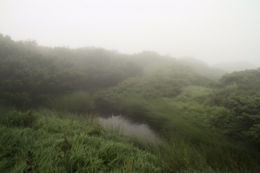 いい雰囲気の地蔵ヶ池