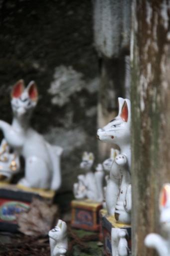 下山神社のキツネさんたち
