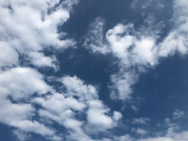 2019.07.12