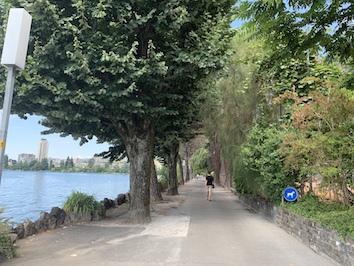 湖岸の遊歩道