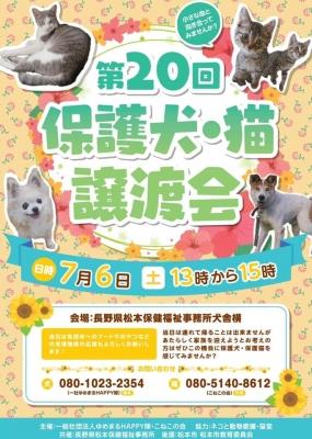 poster_20190704174416acd.jpg