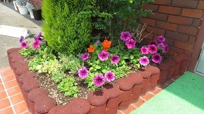 0620花壇