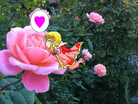 薔薇の妖精