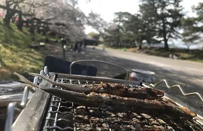 桜を見ながら・・・
