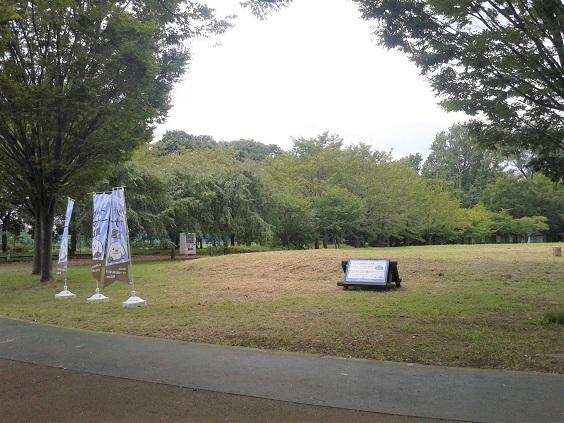 いこいの森公園2