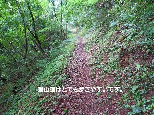 e-takasu (13)