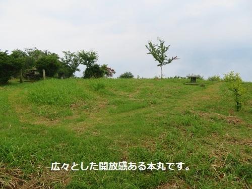 e-takasu (18)