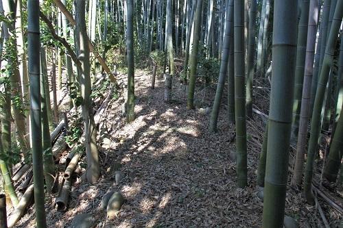 ryusenji (4)