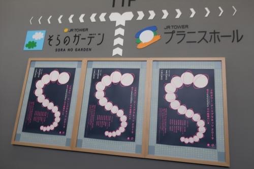 そらのガーデン② (4)_R