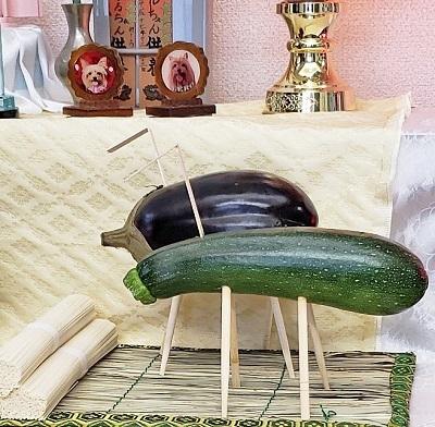 胡瓜と茄子とお蕎麦blos