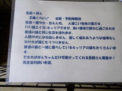 ぽんちゃん説明書き