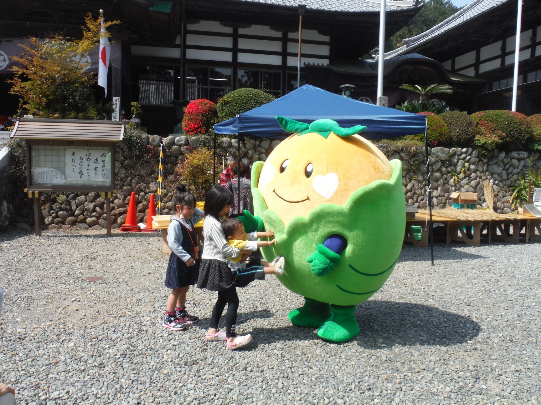 harumaturi-2019-7.jpg