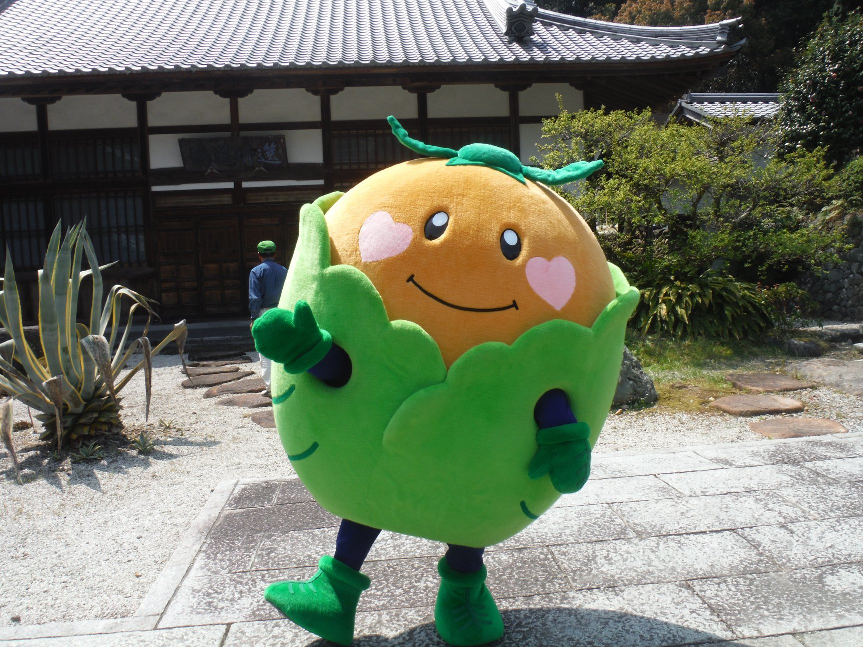 harumaturi-2019-9.jpg