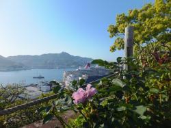 グラバー園から長崎港を眺望