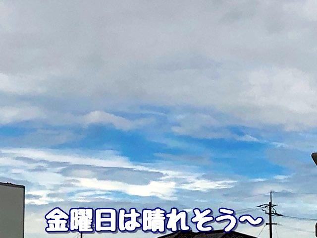 20190627235213d9e.jpg