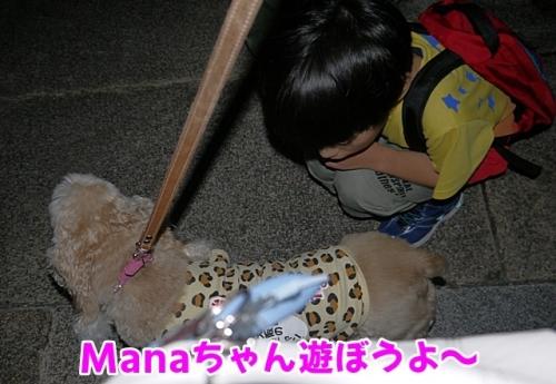 マナちゃん遊ぼうよ