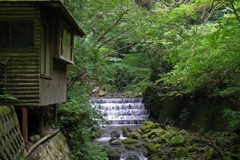 山北町洒水の滝へ向かう道