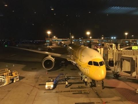 スクート航空の駐機中の787