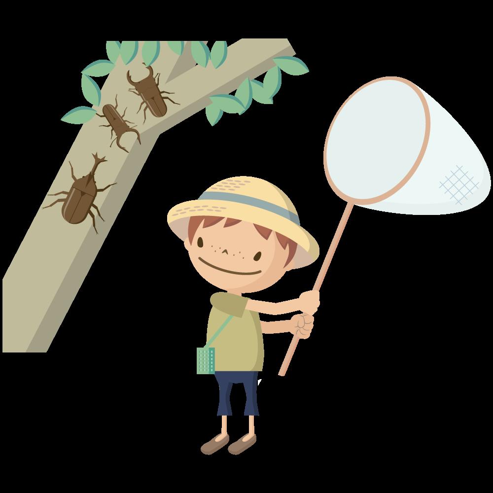かわいい麦わら帽子をかぶった男の子が虫取りをしているイラスト