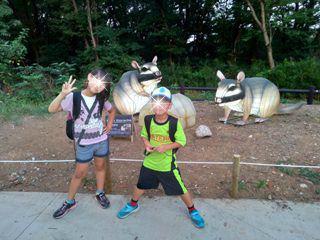ブログ2 0811動物園 (1)