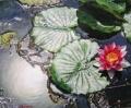 lotus_flower_jpg.jpg