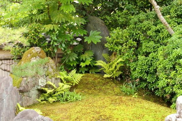 興臨院庭園・遠山石