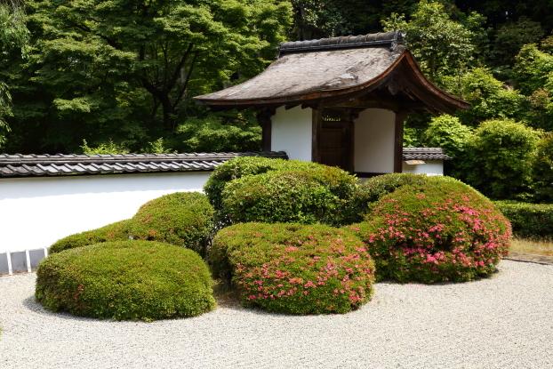 正伝寺庭園・刈込