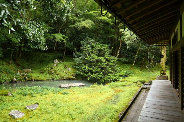 孤篷庵庭園・池泉部分