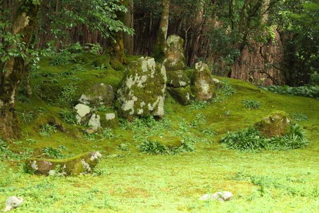 孤篷庵庭園・枯滝石組と舟石