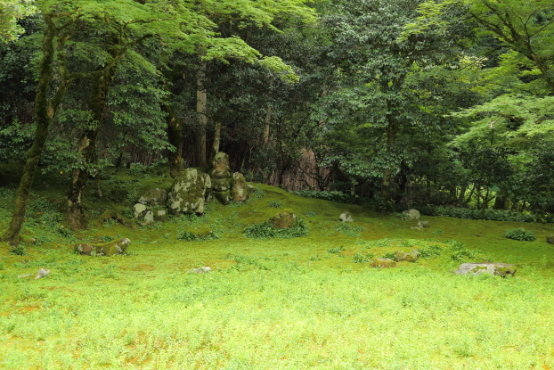 孤篷庵庭園・枯山水部分全景