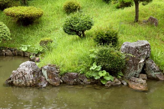 浄信寺庭園・中央部出島