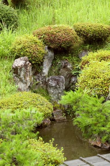 浄信寺庭園・枯滝石組