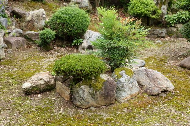 理覚院庭園・亀島