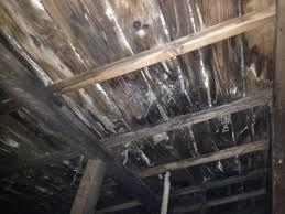屋根からの長年の漏水によって天井裏の腐蝕に