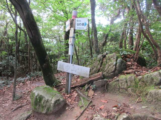 IMG0053JPG頭巾山