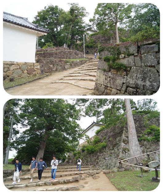 彦根城6(1)
