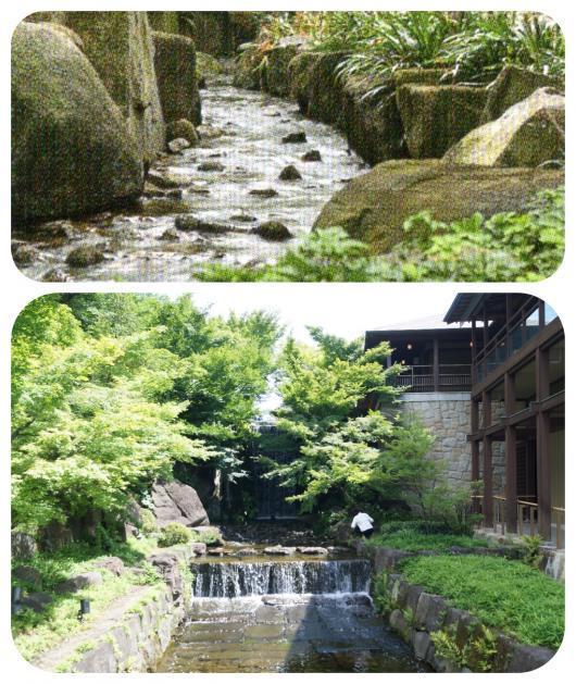 徳川園5(1)