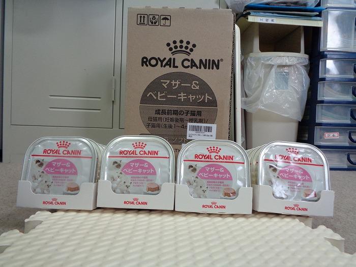 gokifu0116-s.jpg