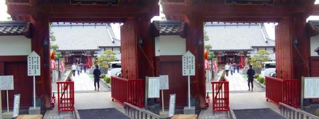 夢京橋キャッスルロード 宗安寺 赤門(交差法)