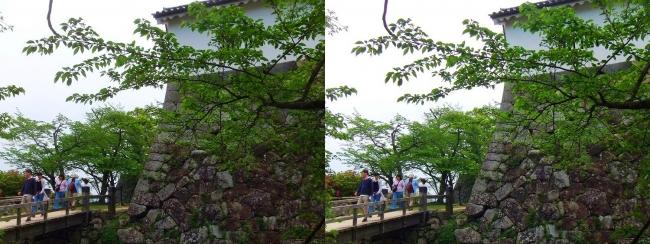 彦根城 西の丸大堀切から出曲輪への橋(平行法)