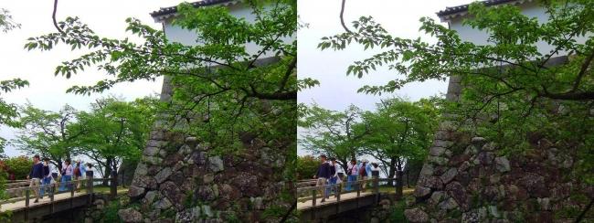 彦根城 西の丸大堀切から出曲輪への橋(交差法)