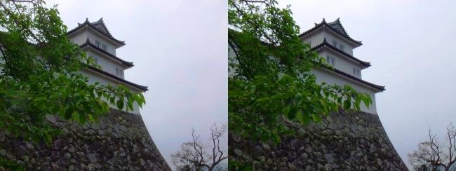 彦根城 西の丸三重櫓②(平行法)