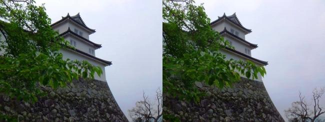 彦根城 西の丸三重櫓②(交差法)