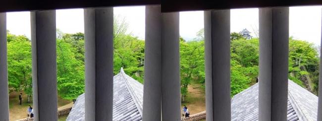 彦根城 西の丸三重櫓からの景観④(交差法)