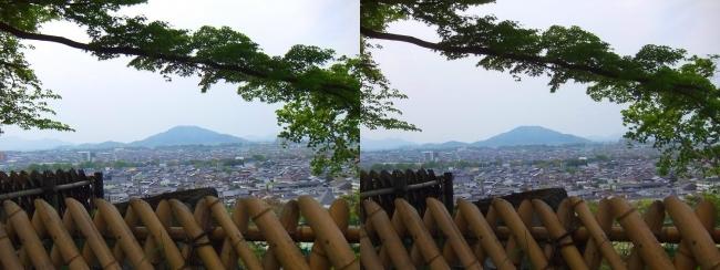 彦根城 西の丸からの景観①(交差法)