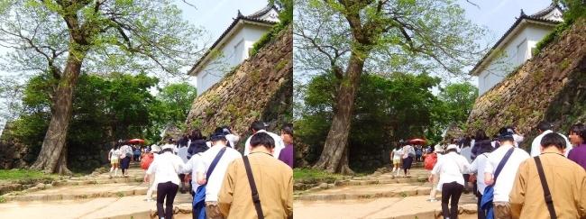 彦根城 太鼓丸の坂道(交差法)