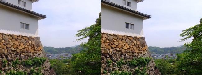 彦根城 天秤櫓③(平行法)